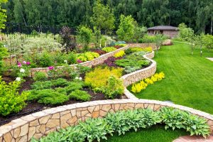 landscaped backyard