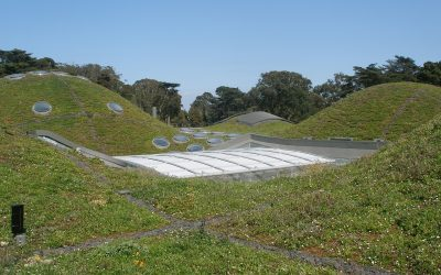 3 Things you Need to Know about Green Roof Technology