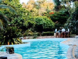 pool in a backyard