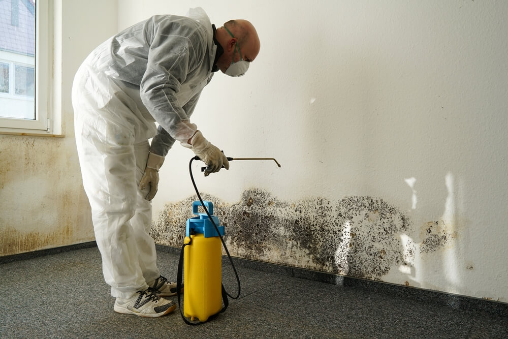 10 Major Home Repairs That Should Be Done by a Professional