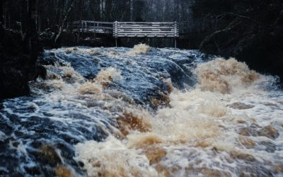Flood-Proof Your Home and Garden