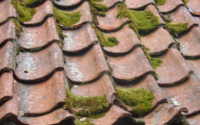 4 Reliable Ways to Fix  Roof Leaks