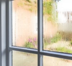 What To Do if Your Home Humidity Levels Are Too High