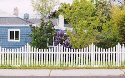 Backyard:  How to Make Yours More Private